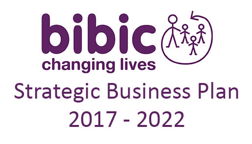 bibic Strategic Plan 2017 - 2022