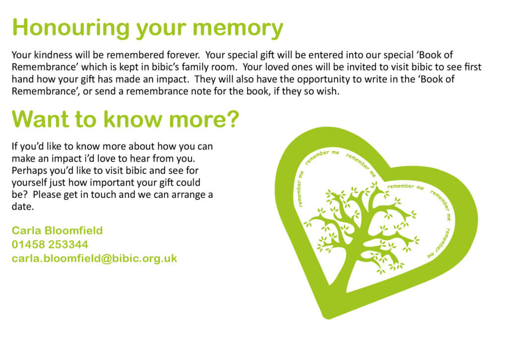 honouring your memory with bibic